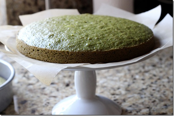 Pistachio Cake with Greek Yogurt Coconut Frosting 074