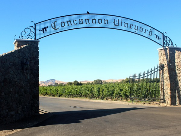 Concannon Vineyards (4)