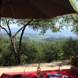 Fourth of July in Napa: Domaine Carneros & Rutherford Hill Winery
