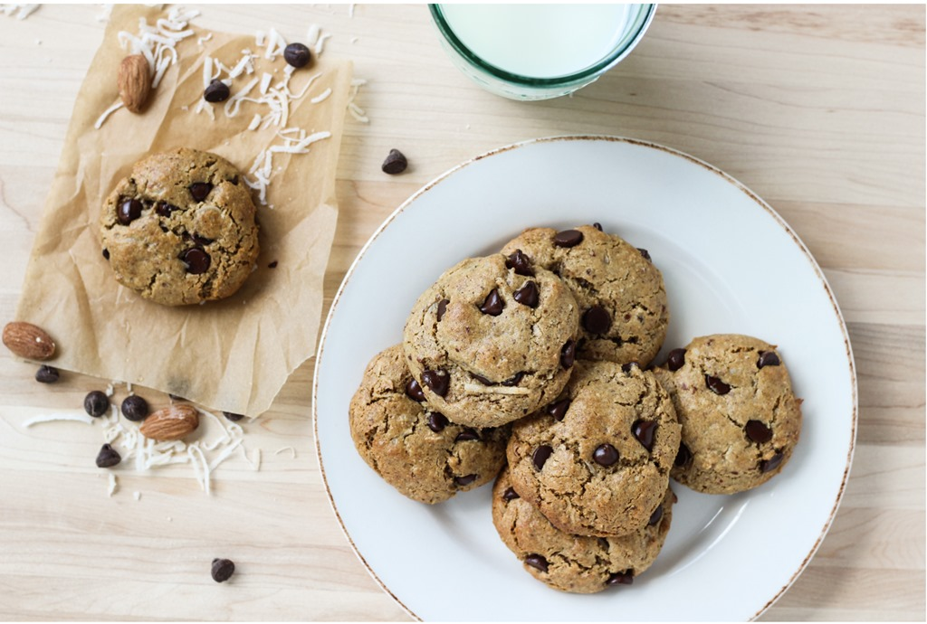 Recipes dairy free cookies