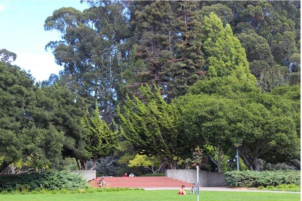UC Berkeley 1