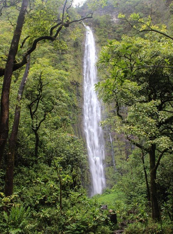 Waimoku Falls Hana Maui