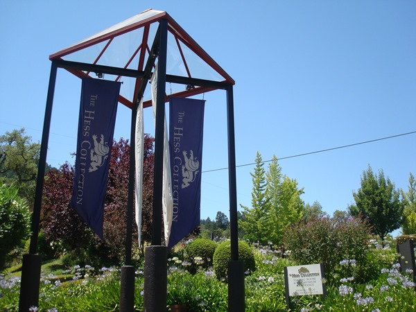 Hess Vineyards, Napa (8)