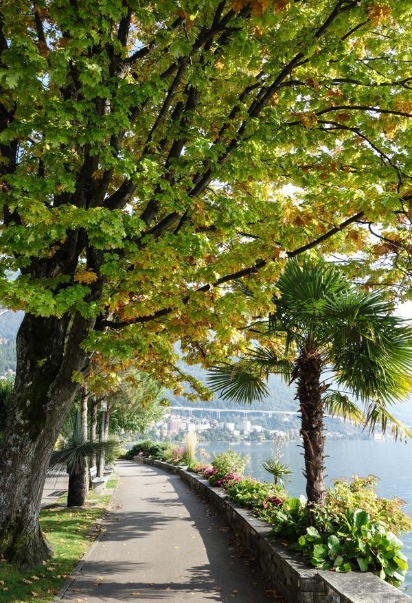 Montreux-_thumb8_thumb.jpg