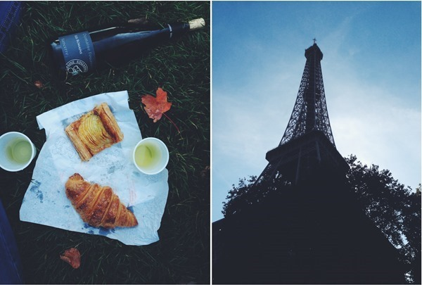 Picnic-Eiffel-Tower-_thumb8_thumb_thumb.jpg