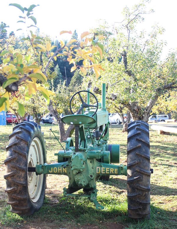 Apple Hill