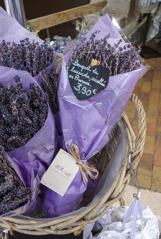 lavender_thumb_thumb.jpg
