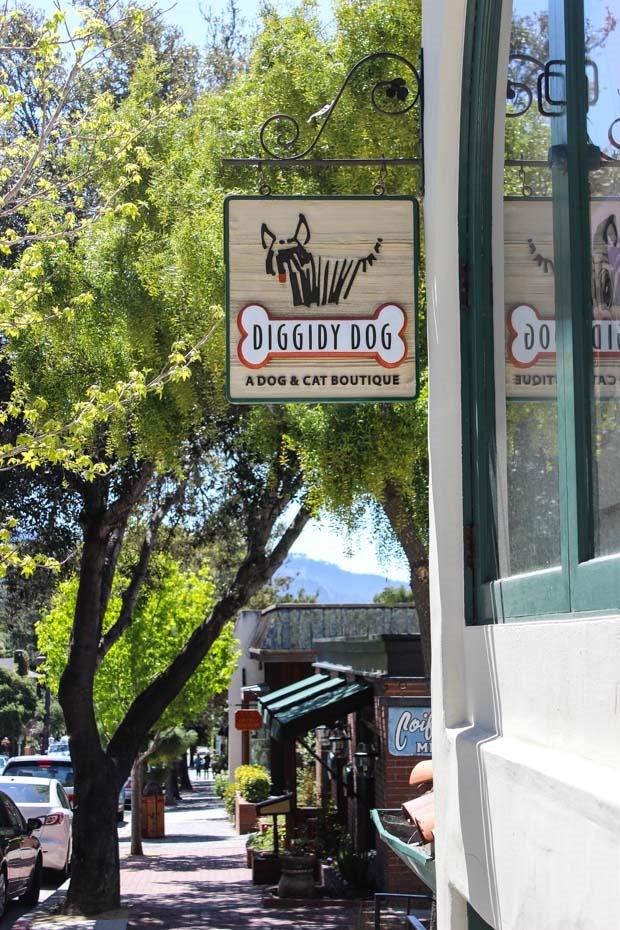 Shops Carmel