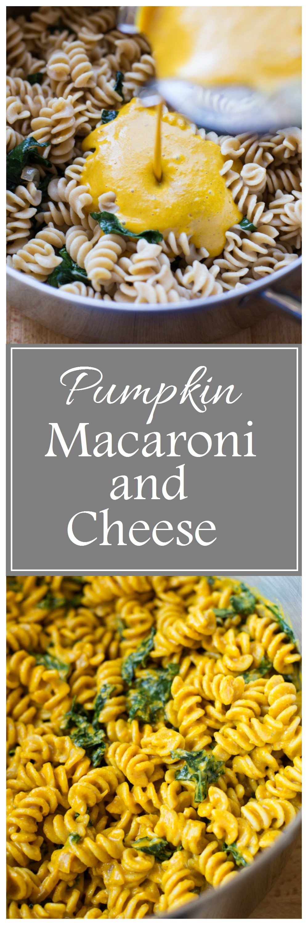 The Best Pumpkin Macaroni and Cheese 1