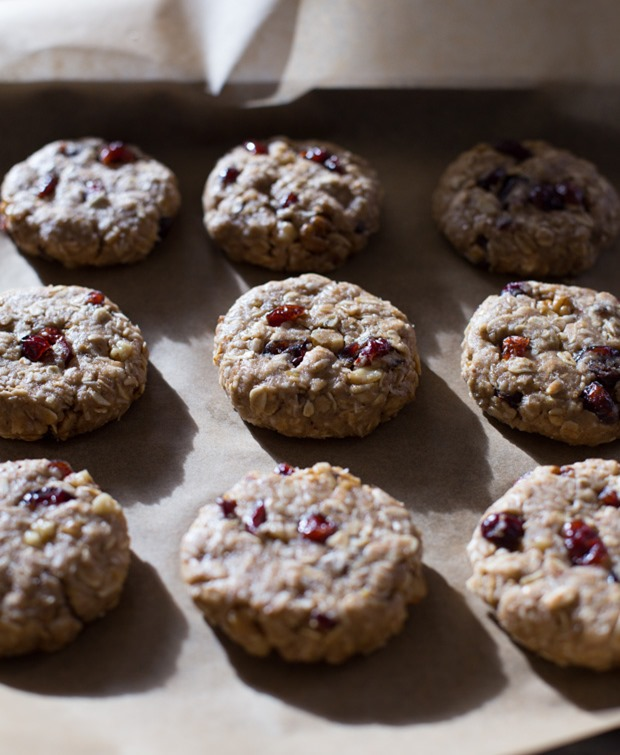 Cranberry-Coconut-Oatmeal-Cookies-1_thumb.jpg
