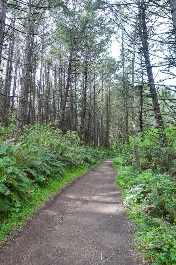 Alamere-Falls-Hike-15_thumb.jpg