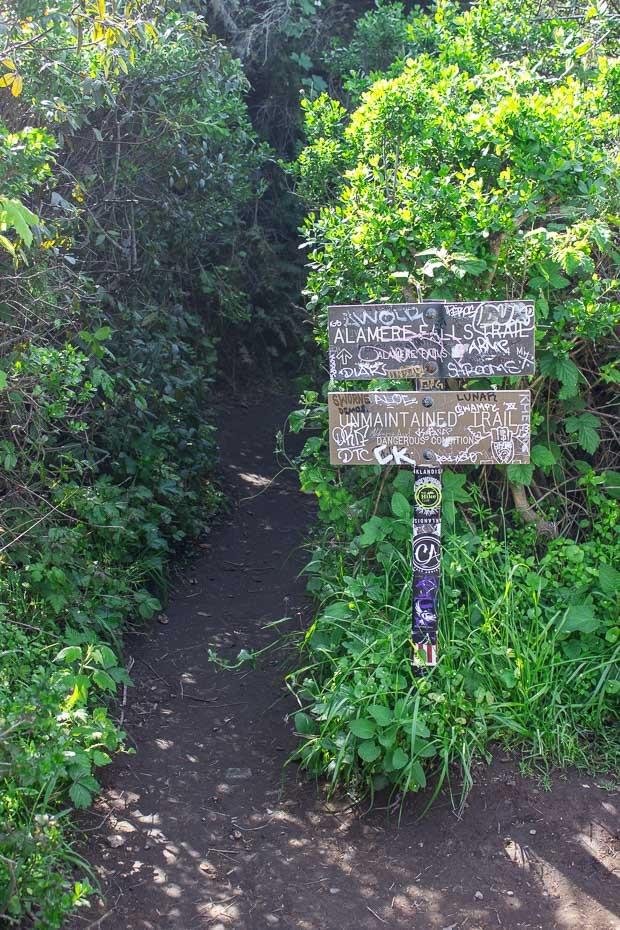 Alamere-Falls-Hike-3_thumb.jpg