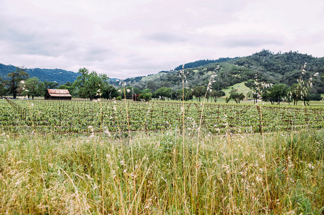 Anderson Valley in Mendocino County