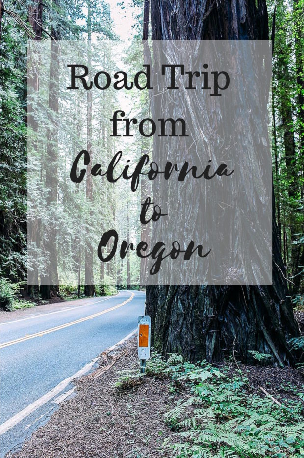 Where to eat, sleep & stay along Highway 1 and Highway 101 | Road trip from San Francisco to Portland
