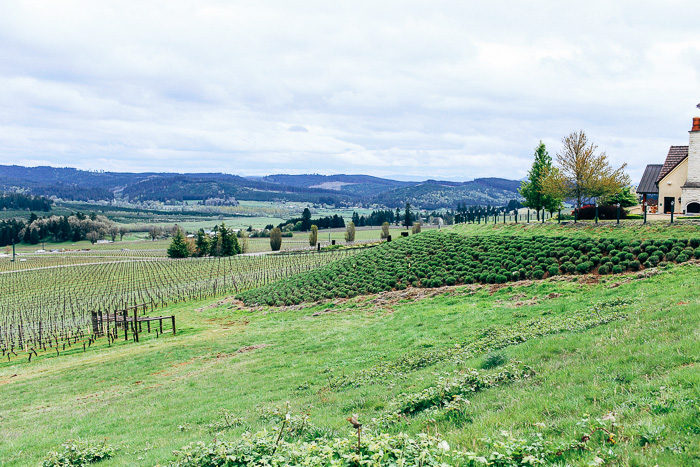 Willamette Valley_