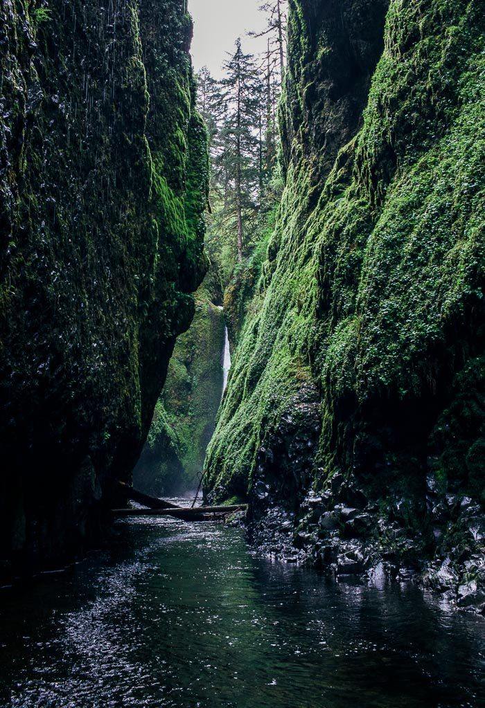Where to Eat, Stay and Play in Portland, Oregon | Oneonta Gorge | travel guide