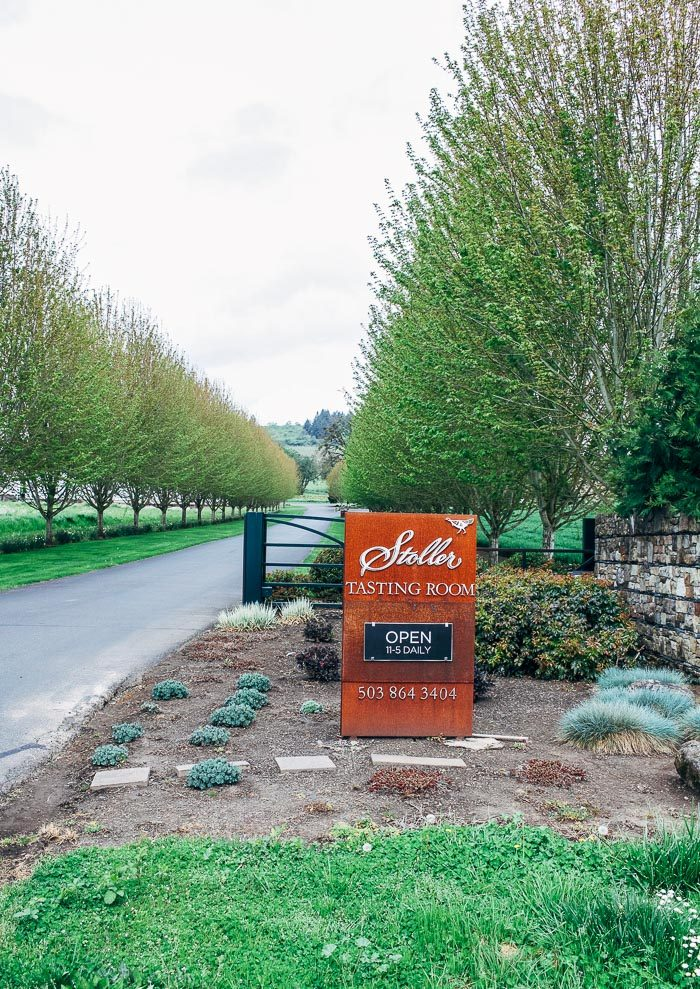 Wine Tasting in Willamette Valley | Travel Guide