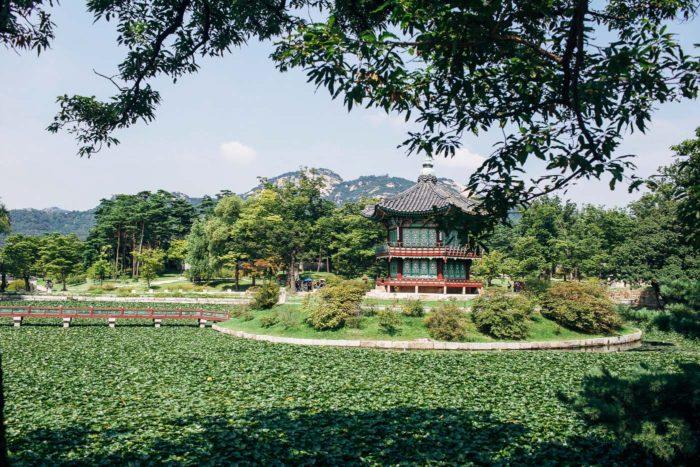 Palace _