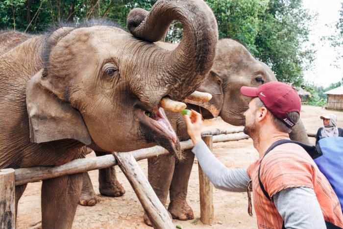 Elephant Nature Park 004