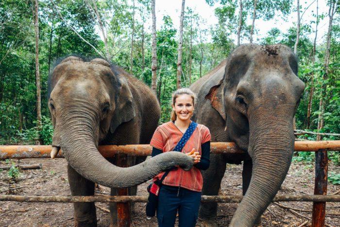 Elephant Nature Park _