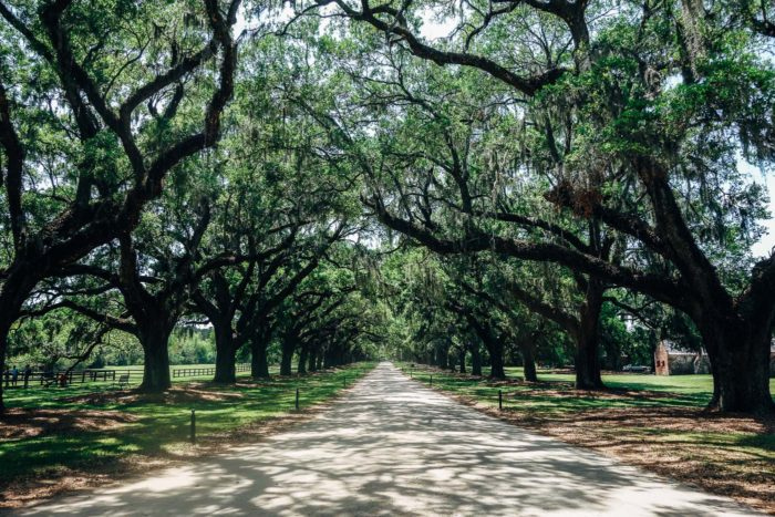 Boone Hall Plantation Charleston SC